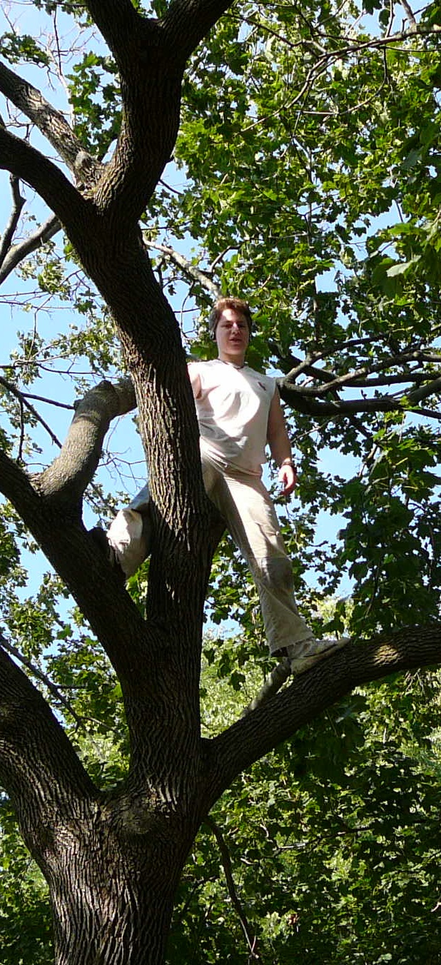 Me in a maple tree in Mr. Pettibone's front yard
